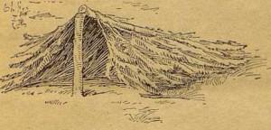 Рис. 11. Шалаш из срубленной елки