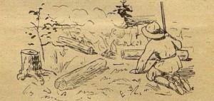 Рис.14. Звездный костер