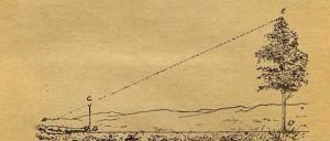 Рис. 25. Определение высоты дерева